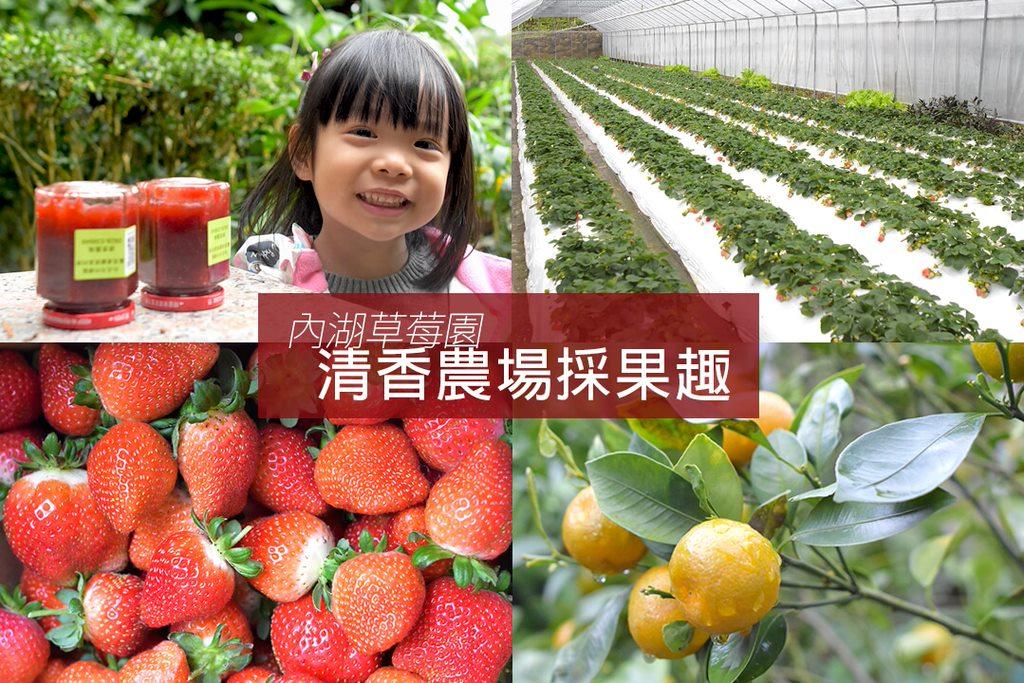 台北內湖草莓園推薦